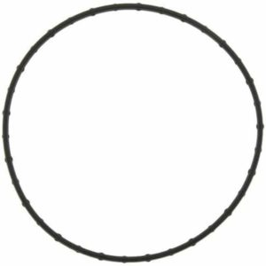catalog/categories/Ford PowerStroke/Ford 6.4Liter/Engine Water Pump Gasket for Ford 6.4L diesel Engine.jpg